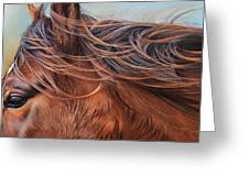 Wind In The Mane Greeting Card by Elena Kolotusha