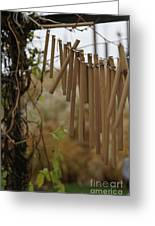 Wind Song - 3 Greeting Card by Linda Knorr Shafer