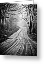Winding Dirt Road Greeting Card by Karol  Livote