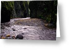 Winding Through Oneonta  Gorge Greeting Card by Jeff Swan