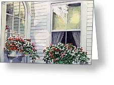 Window Boxes Greeting Card by David Lloyd Glover