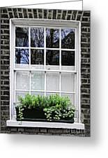 Window In London Greeting Card by Elena Elisseeva