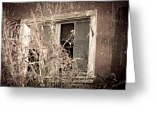 Window Of The Past Greeting Card by Randy Bayne
