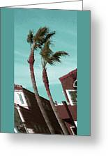 Windy Day By The Ocean  Greeting Card by Ben and Raisa Gertsberg