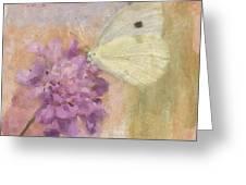 Wings Of Beauty Greeting Card by Betty LaRue