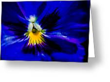 Wings Of The Night Greeting Card by Alexander Senin