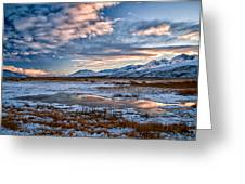 Winter Afternoon Greeting Card by Cat Connor