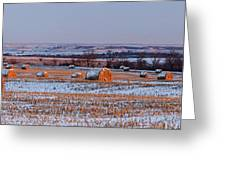 Winter Bales Greeting Card by Scott Bean