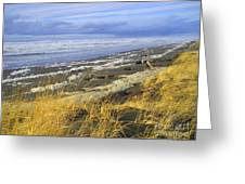 Winter Beach Greeting Card by Jeanette French