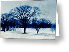 Winter Blues Greeting Card by Shawna  Rowe