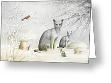 Winter Cats Greeting Card by Elaine Manley