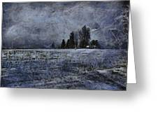 Winter Day Greeting Card by Dan Sproul