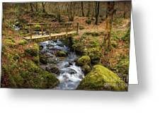 Winter Footbridge Greeting Card by Adrian Evans
