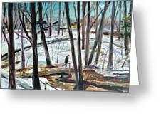 Winter Footbridge Greeting Card by Scott Nelson
