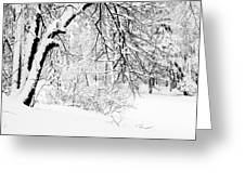 Winter Lace II Greeting Card by Jenny Rainbow