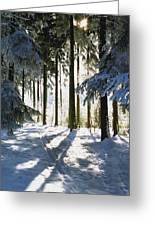 Winter Landscape Greeting Card by Aged Pixel