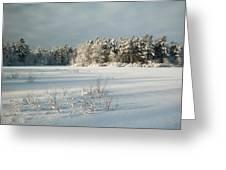 Winter Landscape At Mud Lake Ottawa Greeting Card by Rob Huntley
