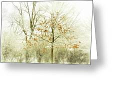 Winter Leaves Greeting Card by Julie Palencia