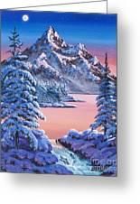 Winter Moon Greeting Card by David Lloyd Glover