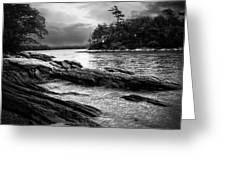 Winter Moonlight Wolfes Neck Woods Maine Greeting Card by Bob Orsillo