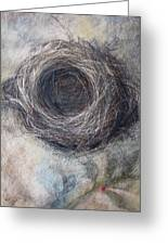 Winter Nest Greeting Card by Tonja  Sell