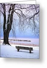 Winter Park In Toronto Greeting Card by Elena Elisseeva