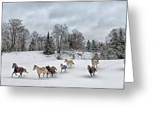 Winter Run Greeting Card by Peter Lindsay