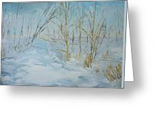 Winter Scene Greeting Card by Dwayne Gresham