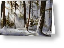 Winter Sun Greeting Card by Gun Legler