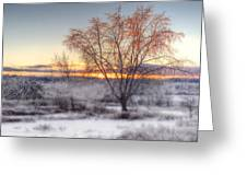 Winter Sunset Greeting Card by Don Powers