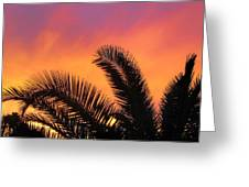 Winter Sunset Greeting Card by Tammy Espino