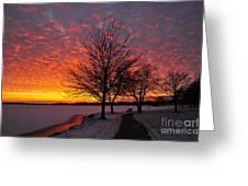 Winter Sunset Greeting Card by Terri Gostola