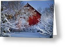 Winter Warmth  Greeting Card by Jeff Klingler