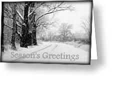 Winter White Season's Greeting Card Greeting Card by Carol Groenen