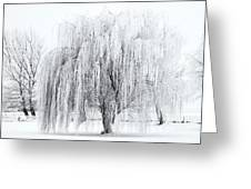 Winter Willow Greeting Card by Mike  Dawson