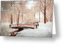 Winter's Bridge Greeting Card by Marty Koch
