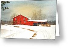 Winters Morning Greeting Card by Mary Timman
