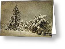 Winter's Wrath Greeting Card by Lois Bryan