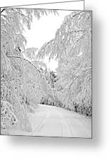 Wintry Road Greeting Card by Conny Sjostrom