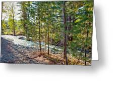 Wolf Creek Stretching Out Greeting Card by Omaste Witkowski