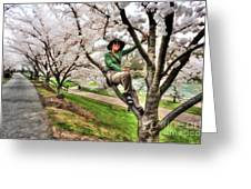 Woman In Tree Greeting Card by Dan Friend