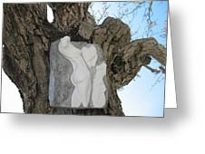 Woman Torso - Cast 1 Greeting Card by Flow Fitzgerald