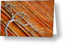 Wood And Stone Greeting Card by Inge Johnsson
