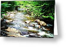 Wooden Bridge Greeting Card by Joy Nichols