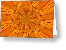 Wooden Flower Greeting Card by Brent Dolliver