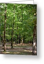 Woodforest 2013 Greeting Card by Maria Urso