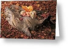 Woodland Fairy Greeting Card by Anne Geddes