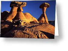 Woody Toadstools Greeting Card by Ray Mathis