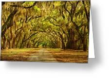 Wormsloe Plantation Oaks Greeting Card by Priscilla Burgers