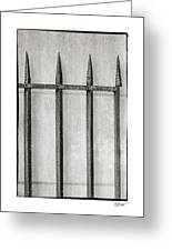Wrought Iron Gate In Black And White Greeting Card by Brenda Bryant